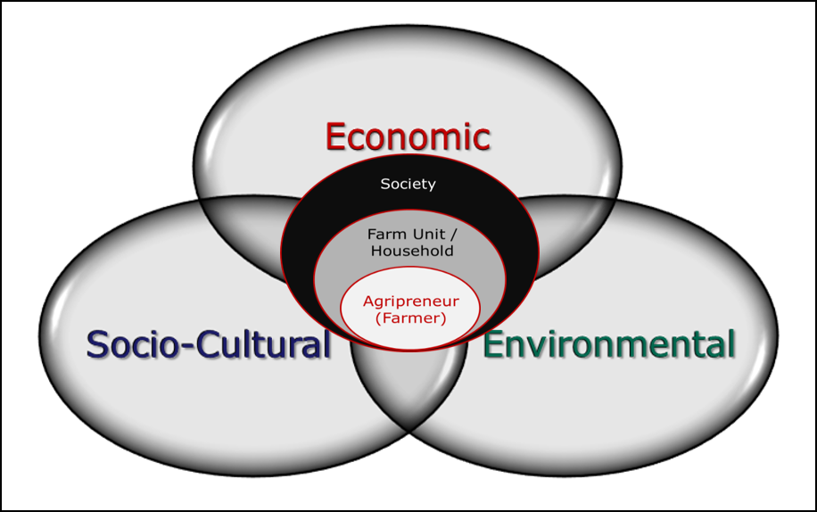 The Agritourism System's Approach depicts the entrepreneurial farmer (nucleus) within expanding concentric layers representing the farm household (second layer) and society (third layer), all vulnerable to economic, environmental and socio-cultural forces.